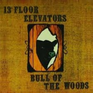 13TH FLOOR ELEVATORS - Bull Of The Woods